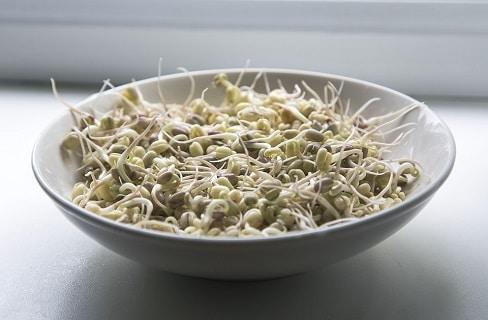 Bienfaits des graines pour la santé